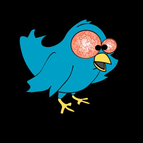 L'oiseau twitter avec une conjonctivite