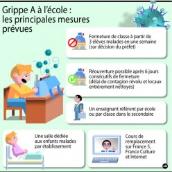 grippe A plan de la rentrée