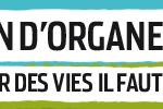 Journée nationale de réflexion sur le don d'organes et la greffe